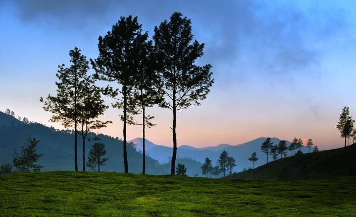 indian Photography Holidays