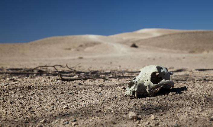 Travel Photography Agafay Desert